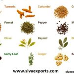 spices manufacturers, whole spices manufacturers, ground spices manufacturers,spices exporters, whole spices exporters, ground spices exporters,siva exports